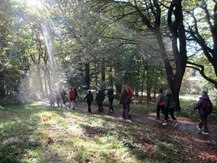 Breathwalk – promenera dig till bättre hälsa och inre balans